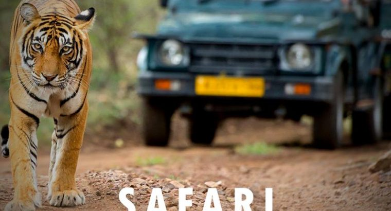 Dandeli Jungle Safari packages, Jungle Safari Online Booking in Dandeli