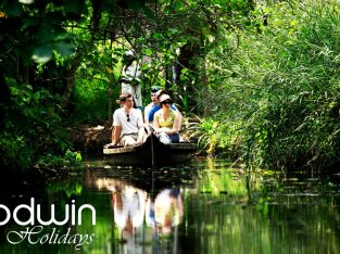 Top Honeymoon Tour Operators In Kerala-Godwin Holidays