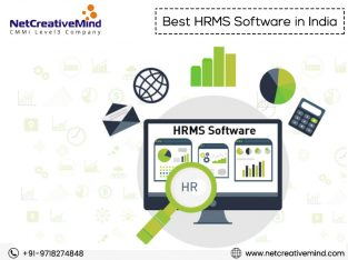 Looking for Best HRMS Software service provider in India