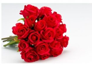 Red Rose Flowers.