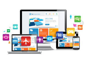 Best Website Designing Service Delhi | Custom Affordable Web Design Noida – Allbatross Digitech