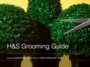 Groom Wedding Suit and Clothing Guide