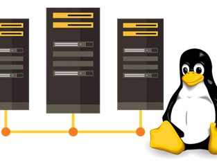 Buy Linux Servers Online at Best Affordable Prices