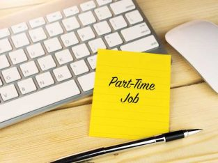 Daily Payment Online Jobs