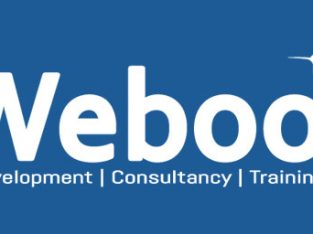 Creative and Responsive Business Website at Free | Weboo Technology
