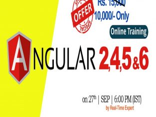 Angular 2, 4, 5 and 6 Online Training in USA – NareshIT