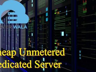Choosing the Cheap Unmetered Dedicated Server
