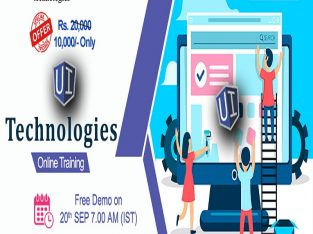 UI Technologies Online Training in USA – NareshIT