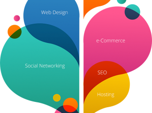 Web Designing & Digital Marketing service in Pondicherry