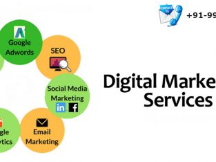 Digital Marketing Agency In noida | Seo Agency | Smo Agency