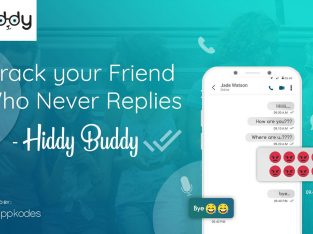 Track your Friend Who Never Replies – Hiddy Buddy