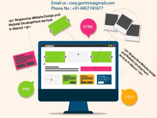 Website Designing Company In Meerut