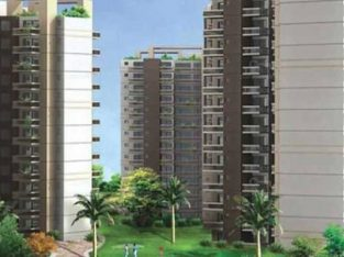 Overview & prices of OSB Golf Heights Sector 69