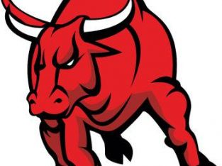 Requires 300 Sales Executive for animated bulls