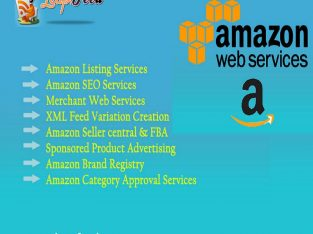 Amazon Product Listing and Optimization Services