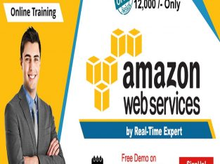 AWS Online Training in USA – NareshIT