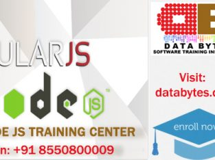 Software Training and Certification Institutes in Bangalore