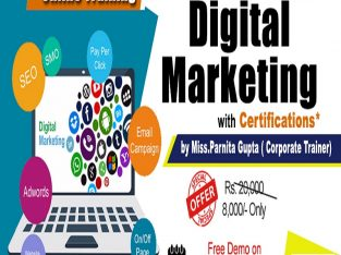 Digital Marketing Online Training in USA – NareshIT
