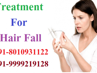 ayurvedic treatment for hair fall in DLF Phase 1|8010931122|Gurgaon