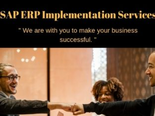 sap implementation services in pune
