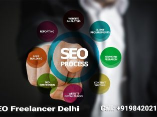 Freelancer SEO Expert in New Delhi | 9842021911