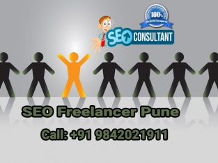 Top SEO Freelancer in Pune | 9842021911