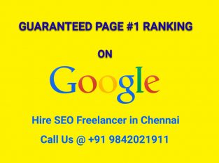 Hire Seo Freelancer in Chennai:  to discuss 9842021911