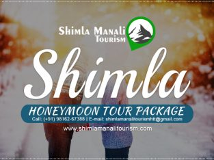 Travel Agency in Himachal Shimla Manali Tourism