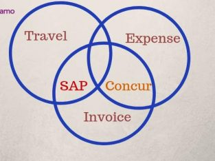 Sap concur s|SAP Travel and Expense Management