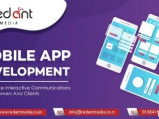 Mobile App Development Service in Chennai