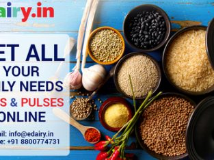 Grocery shopping online gurugram