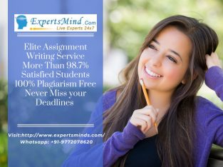 Are You Searching An Expert Who Provides Assignment Help?