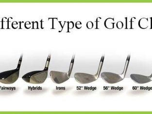 Buy Elite Golf Clubs at the Best Prices at Perfectliesgolf