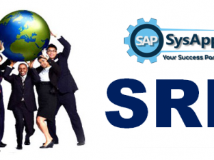 SAP SRM Training Course in Noida
