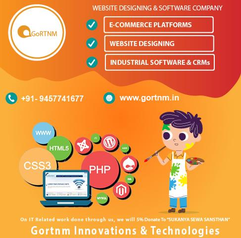 Website Designing And Software Development Company In Noida, Delhi NCR, Meerut